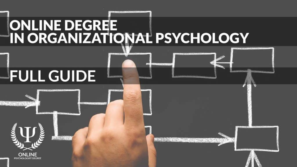 organizational psychology degree online